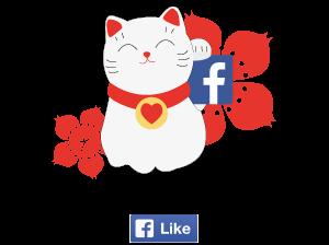 Facebook en passant par le Japon