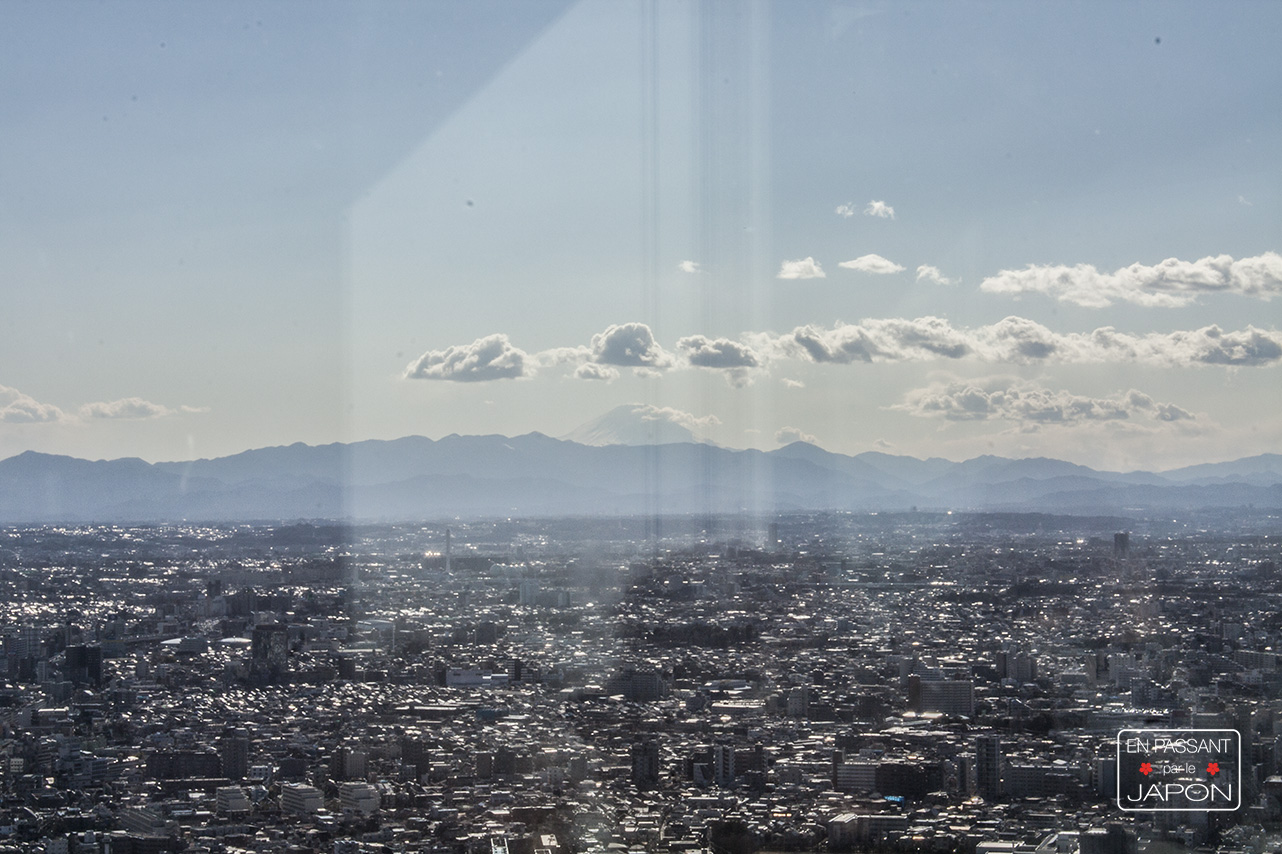 Tokyo metropolitan government mont fuji
