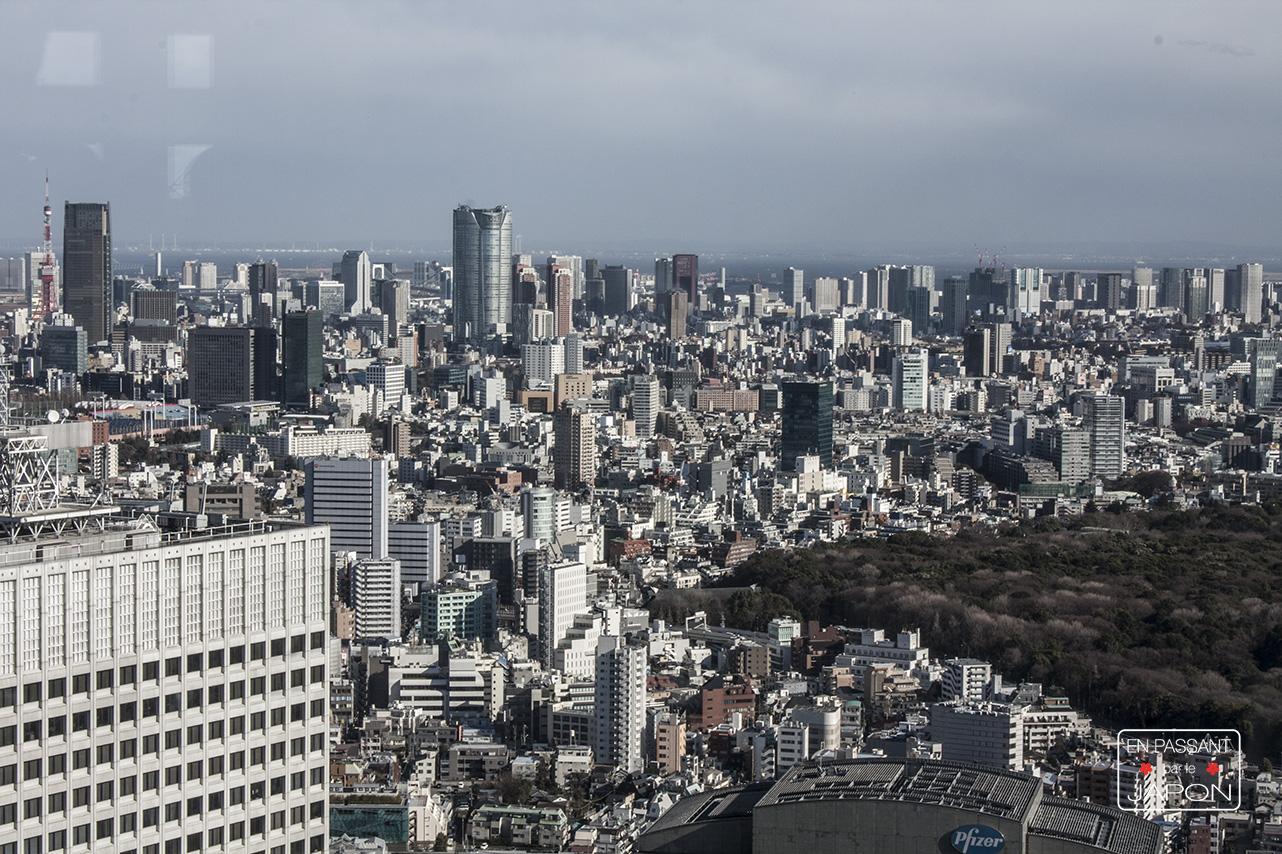 Shinjuku vue