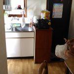 salle à manger appartement japon