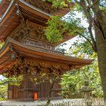 pagode gotokuji