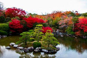 exposition-universelle-osaka-jardin-japonais-1