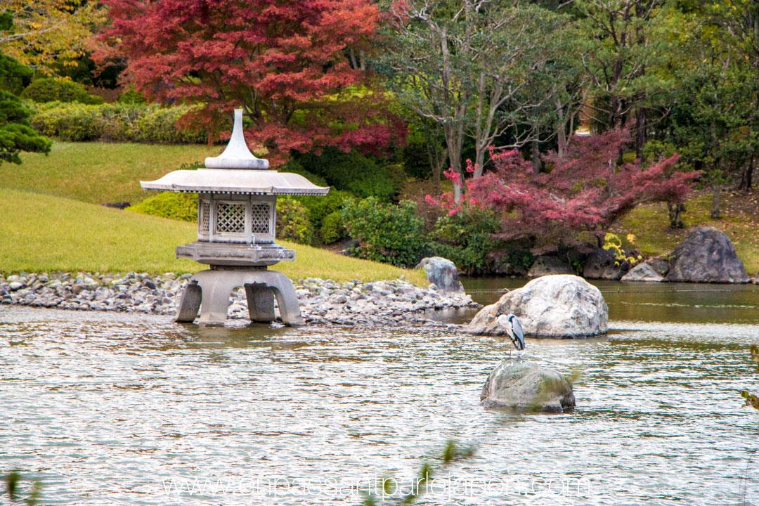 exposition-universelle-osaka-jardin-japonais-7