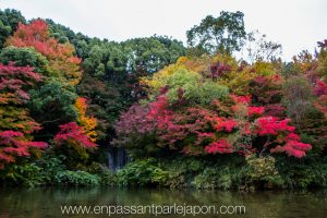 exposition-universelle-osaka-jardins-naturels-11