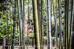 exposition-universelle-osaka-jardins-naturels-4