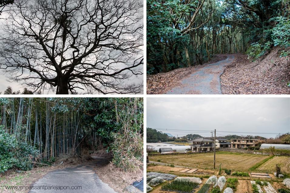 shikanoshima-paysage