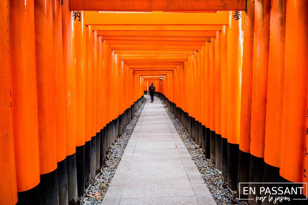 fushimi-seuls