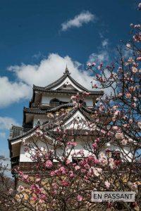 Sakura chateau Hikone