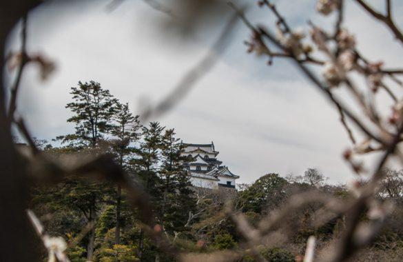 Une-journée-à-Hikone-a-la-une