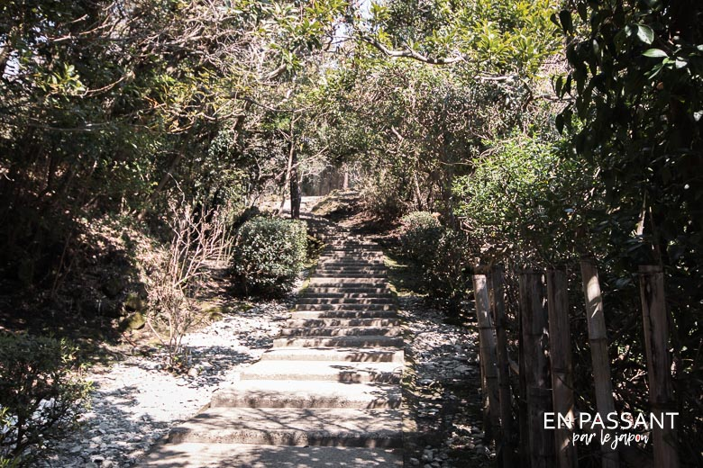 escaliers mont nokogiri
