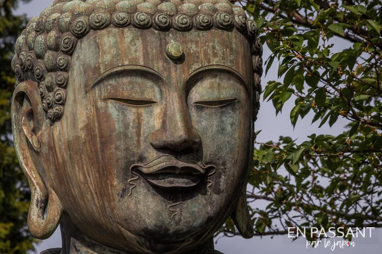 vosage bouddha