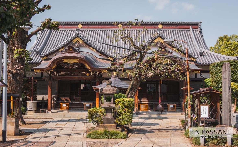 kokozan daienji